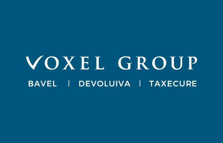 Voxel Group future plans by Expansión