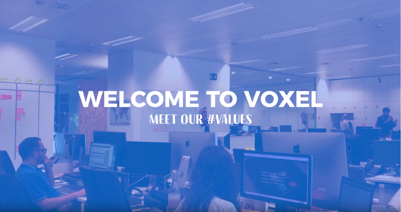 Voxel Group: This is how we do it
