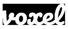 Voxel - Blog